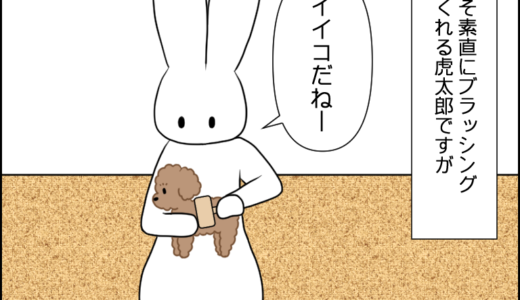虎太郎とブラッシング①