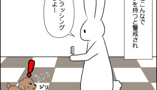 虎太郎とブラッシング②