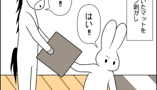 家のマット④