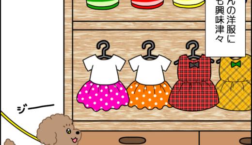 虎太郎と洋服②