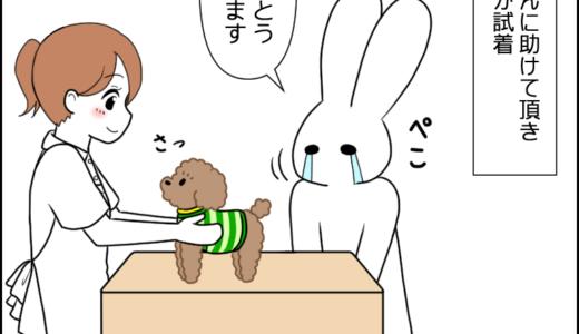 虎太郎と洋服③
