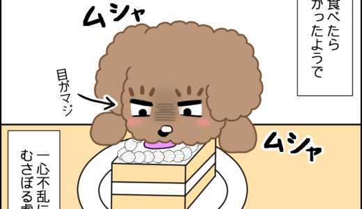 初めてのケーキ④