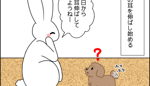 虎太郎の耳②
