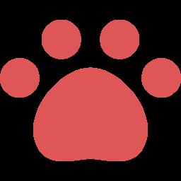トイプードル虎太郎の日記ブログ