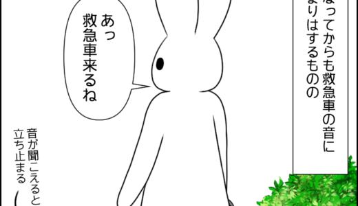 虎太郎の遠吠え③