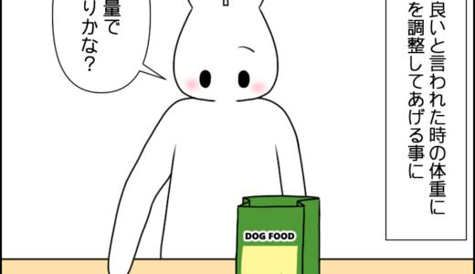 虎太郎のご飯④