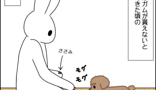 2年ぶりの歯磨きガム③