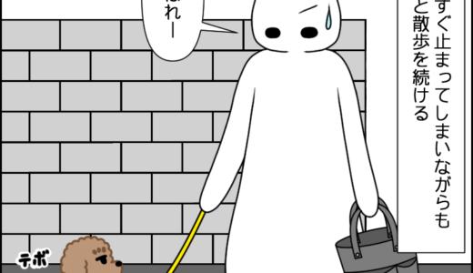 お散歩(覚醒!?)④