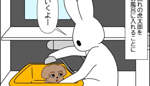 お散歩(覚醒!?)⑩