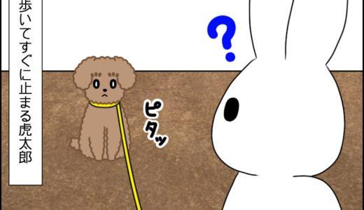 お散歩(覚醒!?)①
