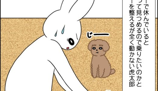 虎太郎と休憩②
