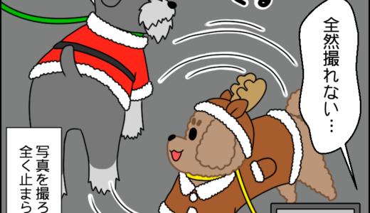 クリスマス散歩⑥