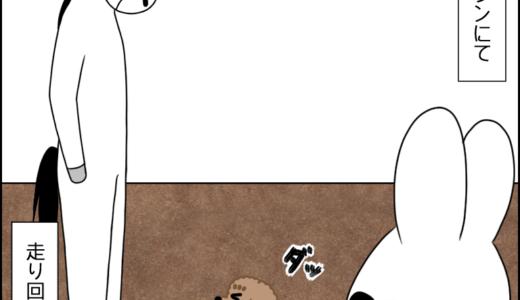 ドッグラン②