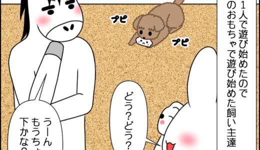 虎太郎との遊び③