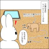 三桜のトレーニング①