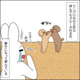虎太郎と三桜③