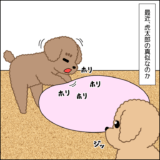虎太郎と三桜⑧