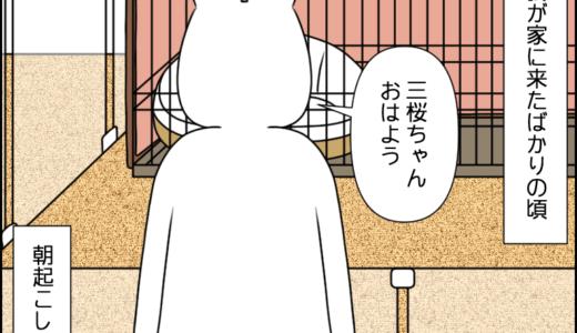 なんの音?①