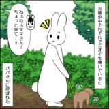 虎太郎と三桜の散歩③