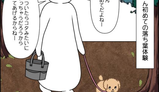 虎太郎の成長→三桜の場合