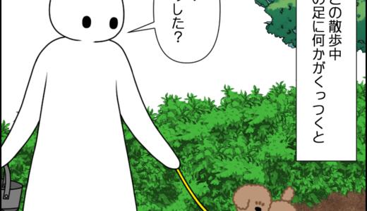 虎太郎の成長?